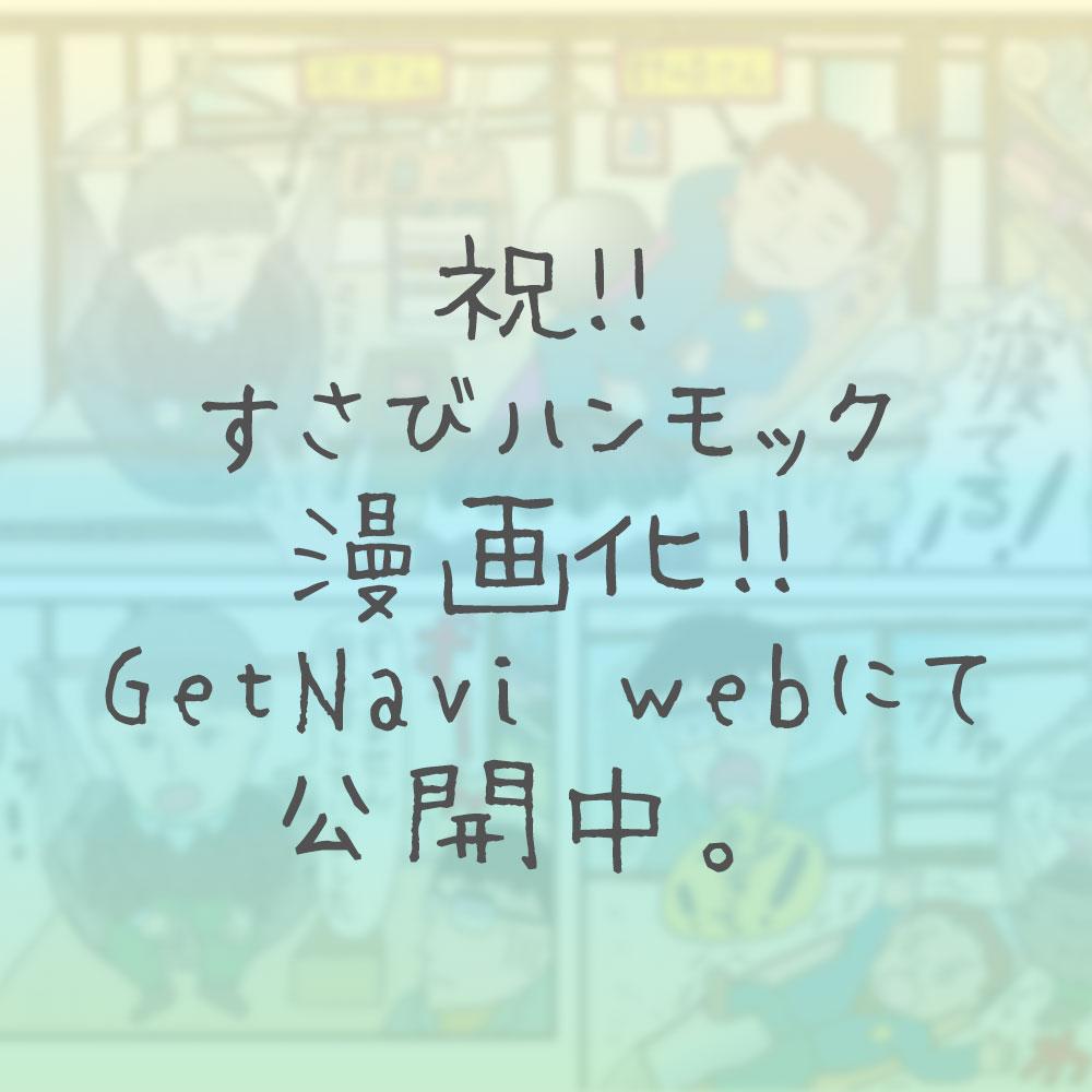 すさびハンモック-getnaviweb