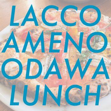 ODAWALUNCH vol.6 ~LACCO AMENO~