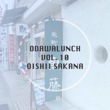 【ランチお休み中2018/6/1現在】Odawalunch Vol.10 ~ 栄町 魚藤~