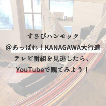 すさびハンモック@あっぱれ!KANAGAWA大行進