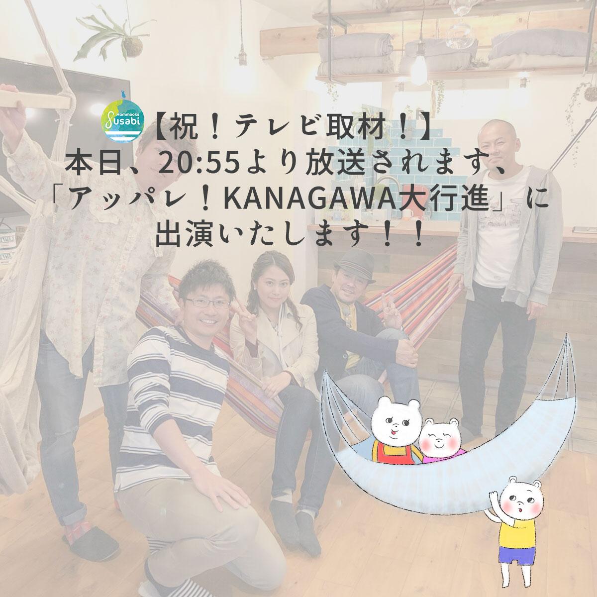あっぱれ!KANAGAWA大行進でハンモック